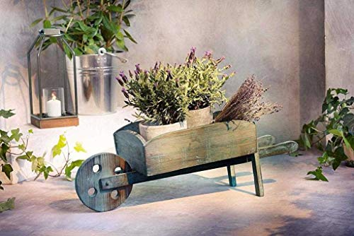 Pflanzer Schubkarre aus Holz 78 cm groß Pflanzschubkarre Blumenkarre Pflanzgefäß Gartendeko Pflanzkarre Pflanzfigur Pflanztopf Gartendekoration