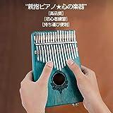 kalimba 17 金属製ピアノキー チューニングハンマー付き 収納ケース付き 心地良い音色 耐久性がある 持ち運び便利 軽量 C4からE6まで17種類のトーンを演奏できるカリンバ 親指ピアノ アフリカの伝統楽器 (ミントグリーン)