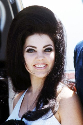 Priscilla Presley 24x36 Poster classic 1960's Graceland