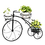Kshioe Bicycle Plant Stand Holder Rack Ideal for Indoor Outdoor, Black