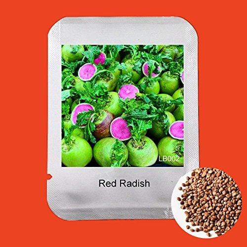 Vente Hot 100 Pcs / sac très délicieux fruits et légumes Graines Xinlimei Red Graines de radis, célèbre Bonsai usine en Chine, # LB002