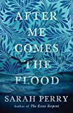 After Me Comes the Flood (English Edition)