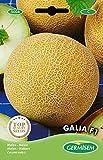 Germisem Galia F1 Semi di Melone 0.5 g