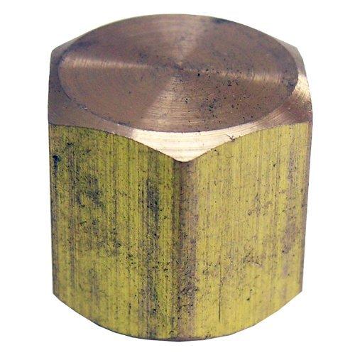 LASCO 17-9143 1/8-Inch Female Pipe Thread Brass Cap by LASCO
