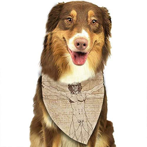 YAGEAD Pauelo para Perros Cachorro y pauelos para Mascotas, Collage Leonard Da Vinci Vitruvian Man Desktop Old Pet Scarf