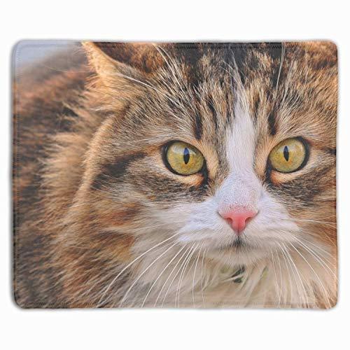 Mausmatte, Personalisierte Rutschfeste Mousepad Für Büroarbeit Reise Nach Hause Katze Maulkorb Pelz Look