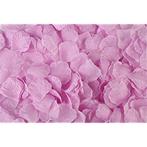 HLLbuy 2000 PCS Lilac Artificial Flower Petals Silk Rose Flower Petals for Wedding Party and Home Decor