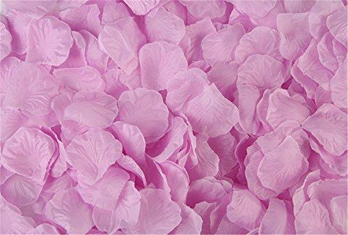 Vivianbuy 2000 PCS Artificial Silk Flower Lilac Rose Petals for Wedding Party Bridal Decoration