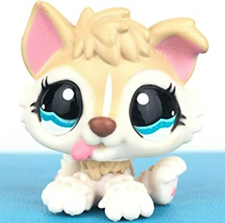 lps baby dog
