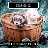 Ferrets Calendar 2021