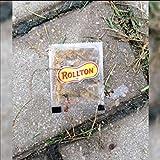 Roltons [Explicit]