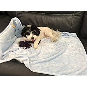 Higher Comfort Super Soft Premium Pet Blankets for Small Dogs, Puppies, Cats & Kittens – 30″ x 40″ – Great for Pet Beds and Carriers