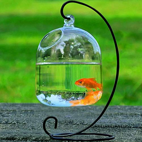 Vase Handgemachte Hängende Hängende Luft Pflanzenvasen Glasvasen Transparente Hängende Vasen Fishbowl Vasen Geschenk
