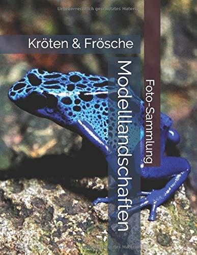 Kröten & Frösche - Modelllandschaften - Foto-Sammlung