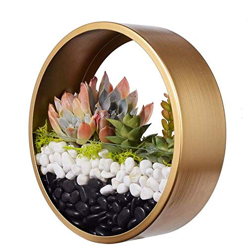 Pot Plante Mural, KinkGlass 20 cm Succulent Planter Vase Fleur Artificielle pour Décoration Murale (Or)