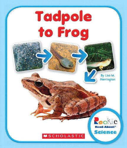 Tadpole to Frog (Rookie Read-About Science: Life Cycles)