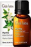 Gya Labs aceite esencial de mirto para la respiración - Aceite natural de mirto para el sueño y el alivio del estrés - Grado Terapéutico 100 puro para la aromaterapia - 10ml