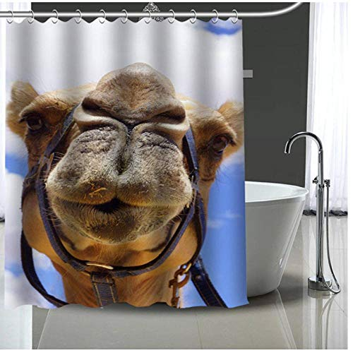 cortinas ducha 180x200 camel