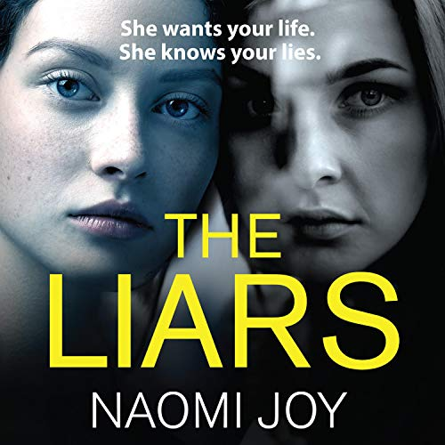 The Liars audiobook cover art