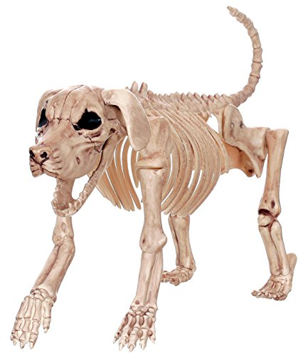Halloween Prop Skeleton Dog
