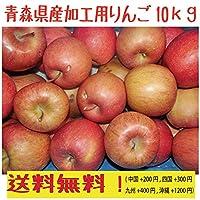 青森県産 加工用りんご サンふじ10kg 生食可!
