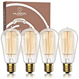 Vintage Incandescent Edison Light Bulbs: 60 Watt, 2100K Warm White Lightbulbs - E26 Base - 230 Lumens - Clear Glass - Dimmable Antique Filament ST58 Light Bulb Set - 4 Pack