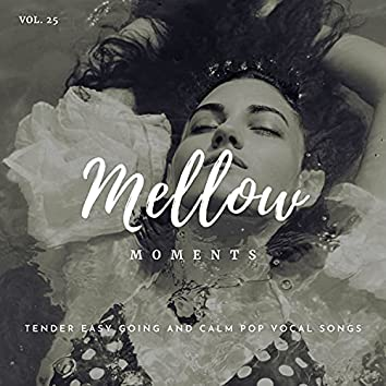 Mellow Moments - Tender Easy Going And Calm Pop Vocal Songs, Vol. 25