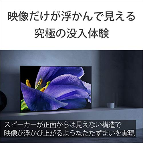 ソニー65V型有機ELテレビブラビアKJ-65A9G4Kチューナー内蔵AndroidTV機能搭載WorkswithAlexa対応2019年モデル