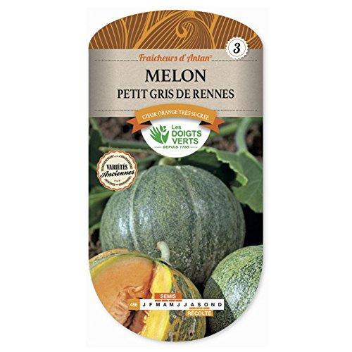 Les doigts verts Semence Melon Petit Gris de Rennes