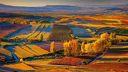 Rompecabezas De 1500 Piezas, Vista De Otoño Cerca De La Ciudad De Clavijo En Rioja, Banja, Puzzle Juguete De Madera Decoración De Interiores