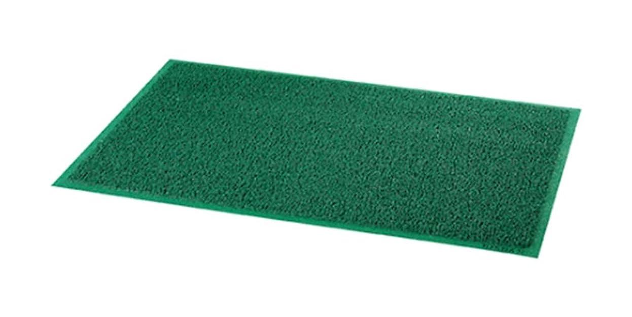 慣れる相対サイズ役に立たないアズワン コイルカラーマット(屋内外兼用) グリーン 大/61-7336-84