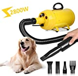 Amzdeal Dog Dryer Pet Hair Dryer 3.8HP 2800W Stepless Speed Dog Blaster Blower Dryer Professional Grooming Dryer for Dogs and Cats, with Spring Hose, Heat System, 4 Nozzles