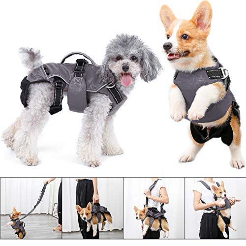 4 in 1 Multi Functional Dog Backpack Carrier for Small Dog, Portable Removable Pet Chest Harness Vest Leash Set with Handle, Puppy Reflective Outdoor Walking Bag, Dog Pad Coat Jacket Clothes (S, Gray)