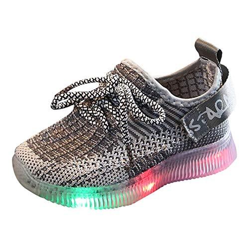 YISHIO LED leuchten Babyschuhe 1-6 T-Trainer Kleinkind Leuchtende Kinder Wanderschuhe Atmungsaktive Socker Sneakers Weiche Sohle Geschenk für Jungen Mädchen Leichte (Color : DDGray, Size : 22)