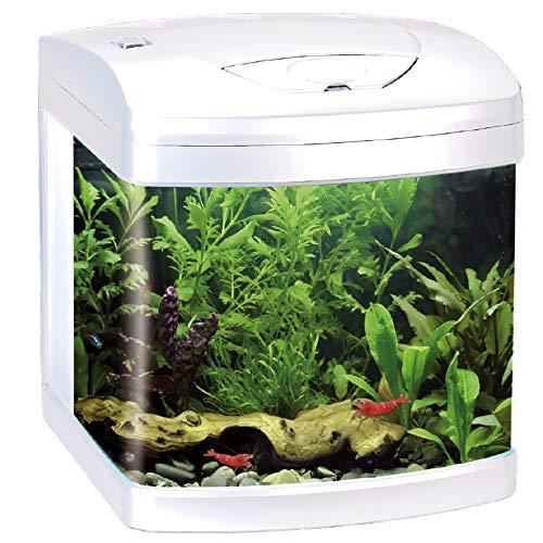 AMTRA Laguna XCUBE 26 LED White/Acquario Completo di Illuminazione LED e Filtro/cm 31x32x37 / 26 Litri