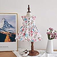 2020 子供用 ドレス ニュー 欧米風 プリンセス フラワー ノースリーブ スカート ベビードレス ベビーデイジー 結婚式 セレモニードレス フォーマルドレス 子供服 女の子 赤ちゃん