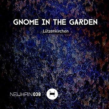 Gnome in the Garden