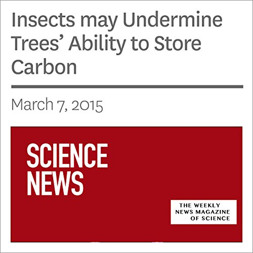 Insects May Undermine Trees' Ability to Store Carbon                   By:                                                                                                                                 Sarah Zielinski                               Narrated by:                                                                                                                                 Mark Moran                      Length: 3 mins     Not rated yet     Overall 0.0