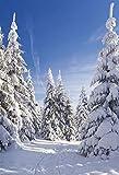 i.stHOME Textilposter Winter Deko Banner Schneewelt - Poster Stoff 90 x 180 cm Wanddeko Schneelandschaft modern, Ladendeko