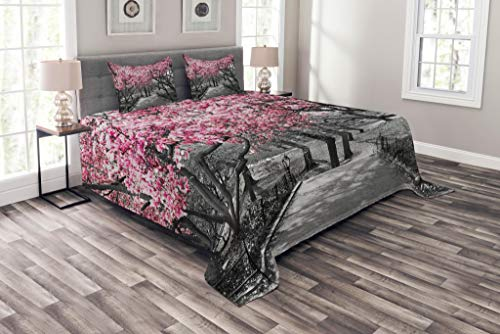 Lunarable NYC Bedspread, Blossoms in Central Park Landscape Cherry Trees Forest Spring Season Picture, Decorative Quilted 3 Piece Coverlet Set with 2 Pillow Shams, Queen Size, Magenta Grey