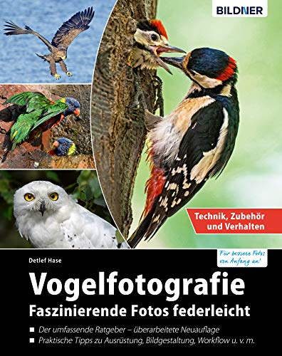 Vogelfotografie: Faszinierende Fotos federleicht