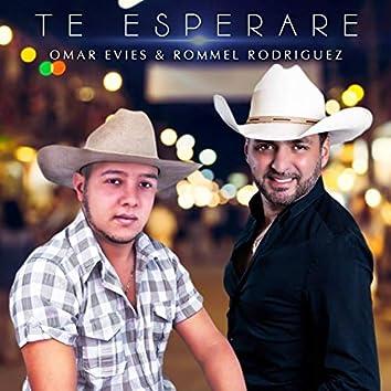 Te Esperaré (feat. Omar Evies)