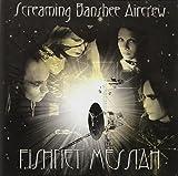 Fishnet Messiah by Screaming Banshee Aircrew