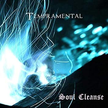 Soul Cleanse