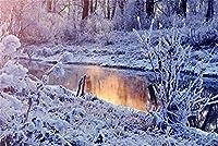 大人のための500ピースパズル冬の湖の雪