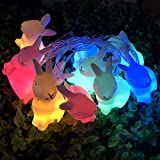 JKKJ Guirnalda de 10 luces LED de conejo de Pascua, funciona con pilas,...
