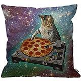 HGOD DESIGNS Kissenbezug Lustig Leerzeichen Katze Und Pizza Kissenhülle Haus Dekorativ Für...