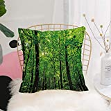 Purer Weicher Kissenbezug Kissenhülle Set,Natur, Wald Baum Wald Dschungel im sonnigen Tag Mutter...