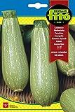 Semillas Fitó 25 - Semillas de Calabacín Verde Pequeño de Argel