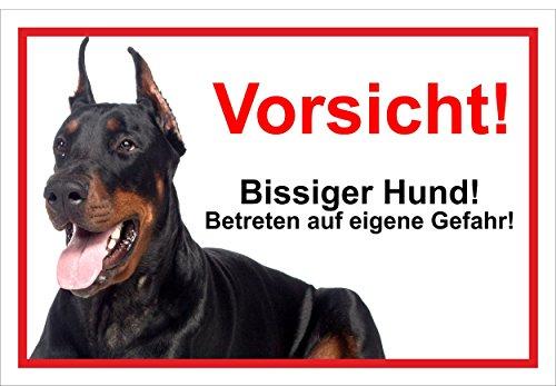 Melis Folienwerkstatt Schild Warnschild Vorsicht freilaufender Hund – Dobermann Achtung Bissiger Hund – 20x30cm – S22B